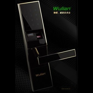 WulianWireless Password & Card Lock Series